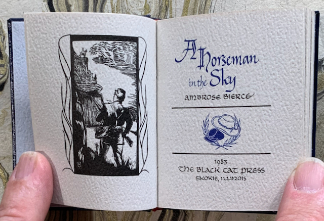 Image for A Horseman in the Sky